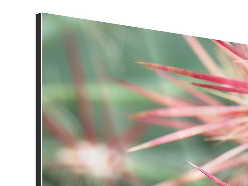 Aluminiumbild 5-teilig modern Die Kaktusblüte