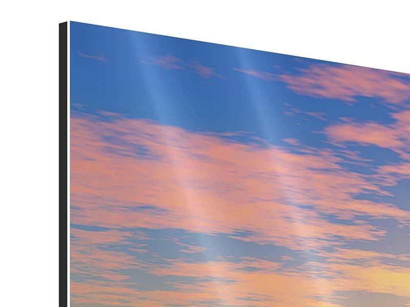 Aluminiumbild 5-teilig modern Blumenpanorama bei Sonnenuntergang