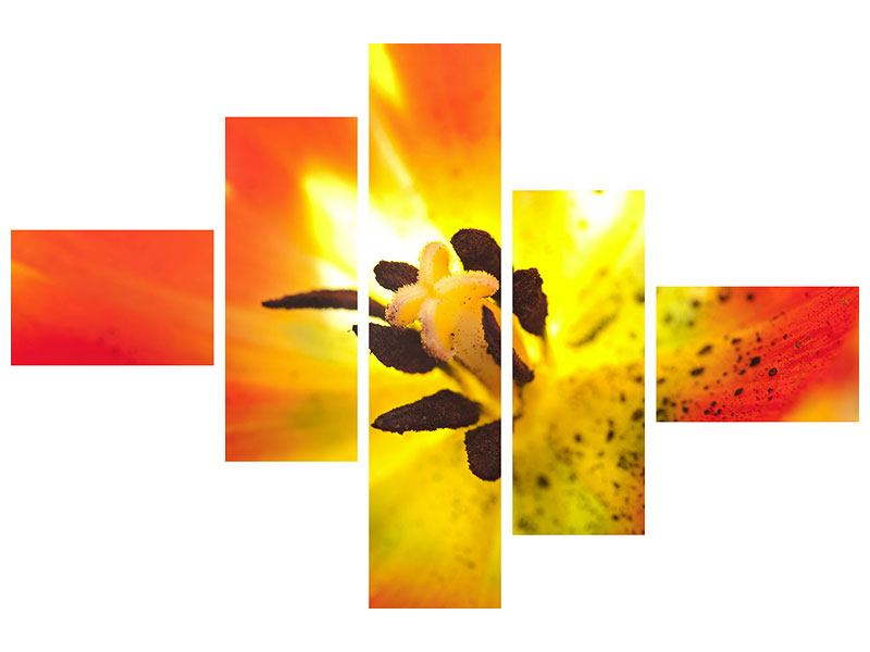Aluminiumbild 5-teilig modern Die Narbe einer Tulpe XXL
