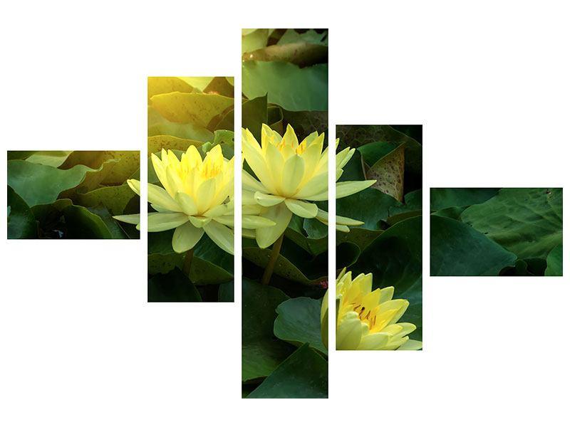 Aluminiumbild 5-teilig modern Wilde Lotus