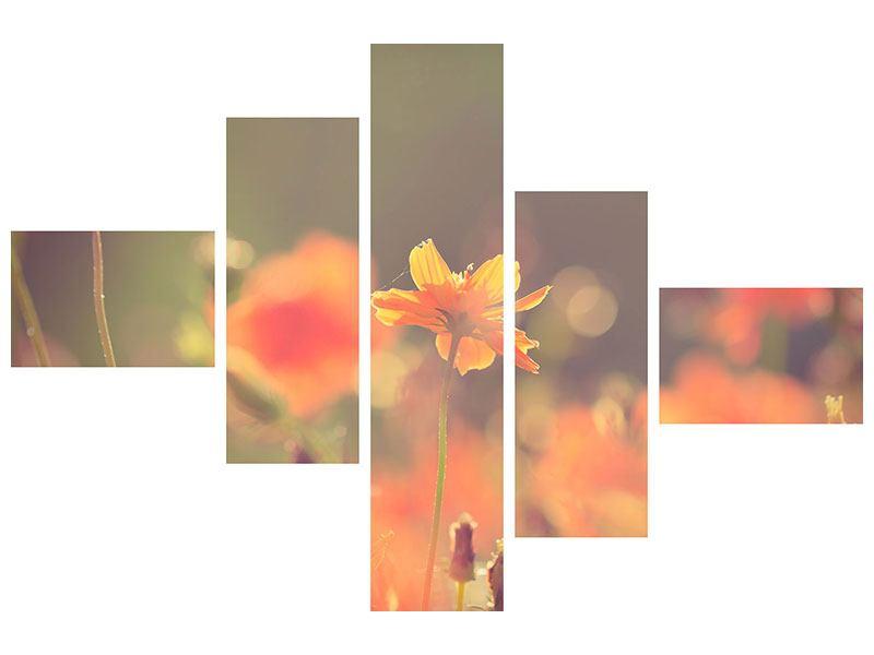 Aluminiumbild 5-teilig modern Blütenpracht
