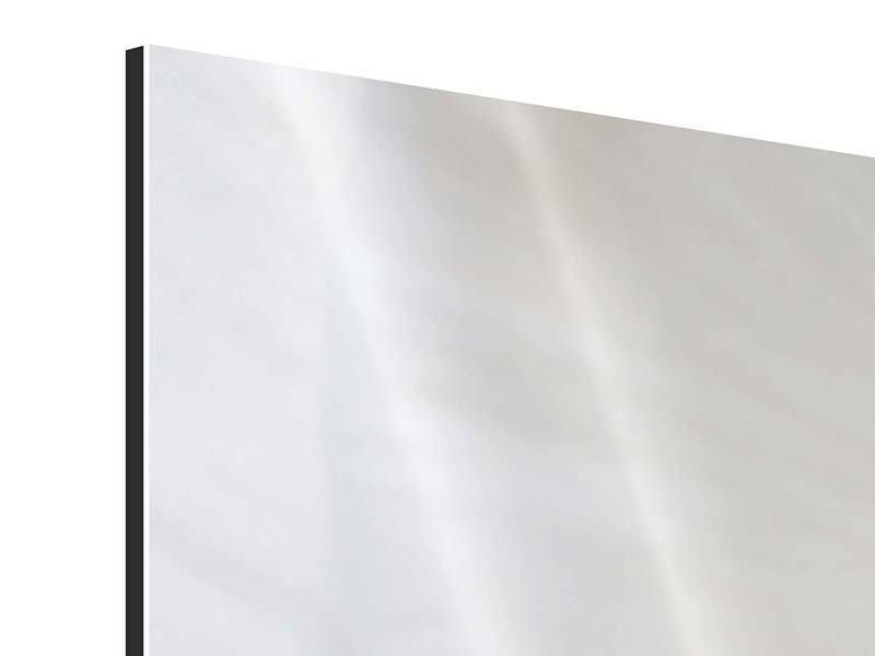 Aluminiumbild 5-teilig modern In einer Blüte