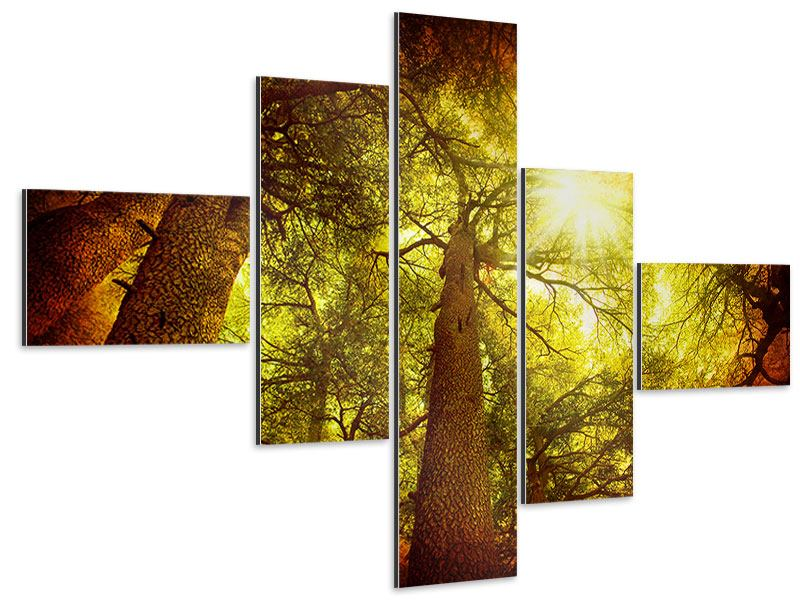 Aluminiumbild 5-teilig modern Cedar Baum