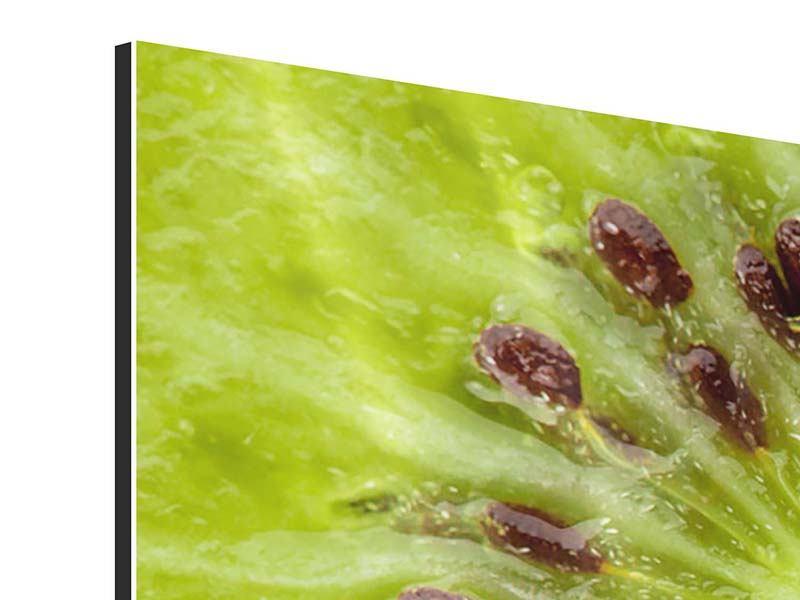 Aluminiumbild 5-teilig modern Close Up Kiwi