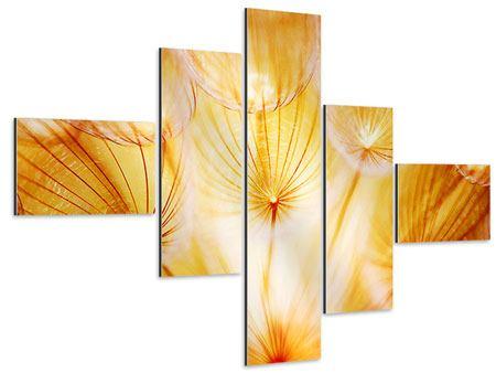 Aluminiumbild 5-teilig modern Close Up Pusteblume im Licht