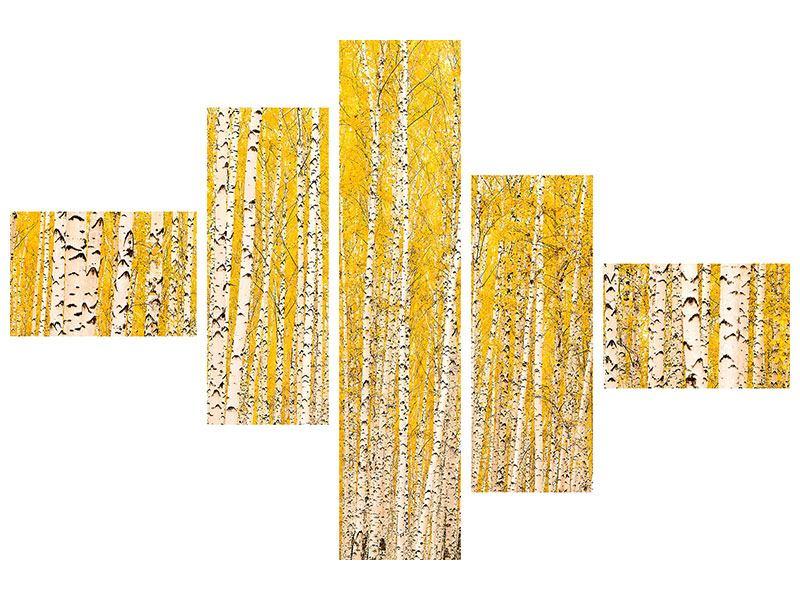 Aluminiumbild 5-teilig modern Der Birkenwald im Herbst