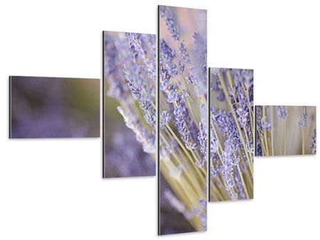 Aluminiumbild 5-teilig modern Lavendel XXL