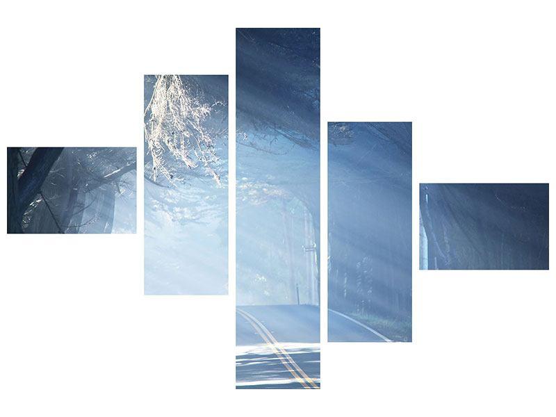 Aluminiumbild 5-teilig modern Lichtdurchflutete Baumallee