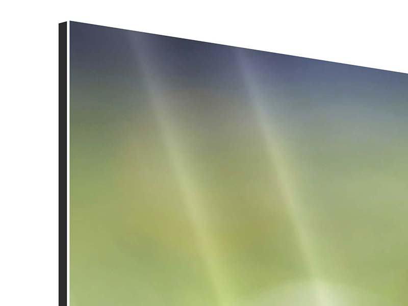 Aluminiumbild 5-teilig modern Die Blütenknospe