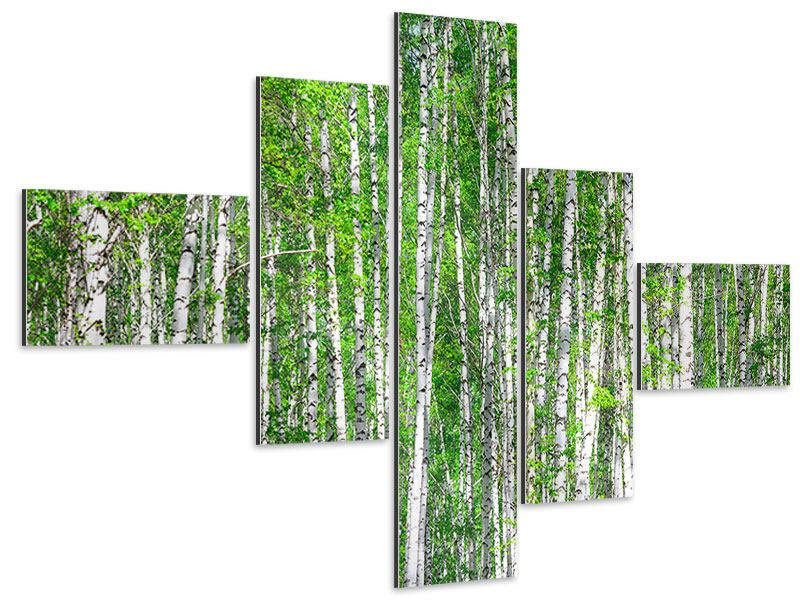 Aluminiumbild 5-teilig modern Der Birkenwald