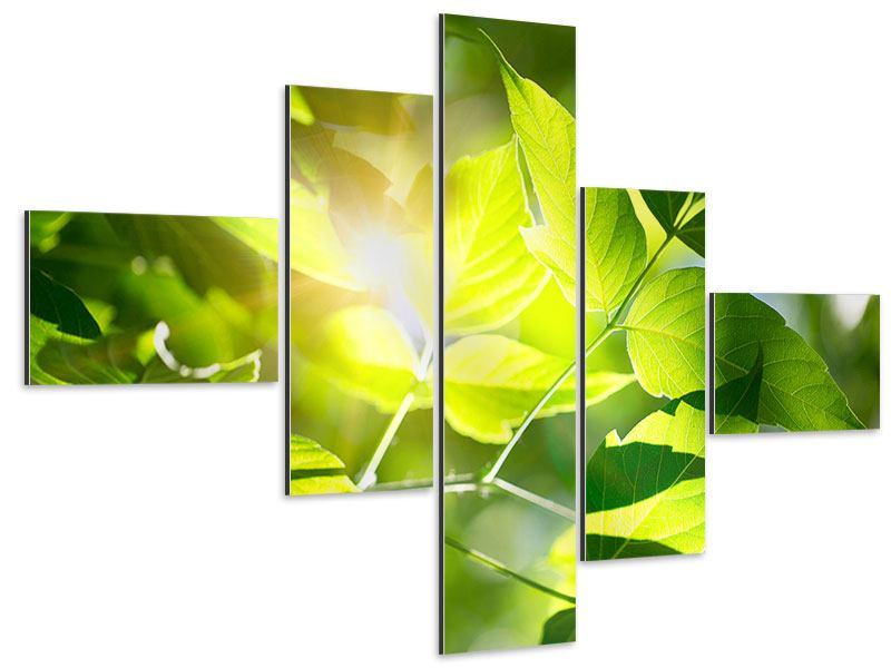 Aluminiumbild 5-teilig modern Es grünt so grün