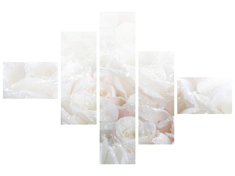 Aluminiumbild 5-teilig modern Weisse Rosen im Morgentau