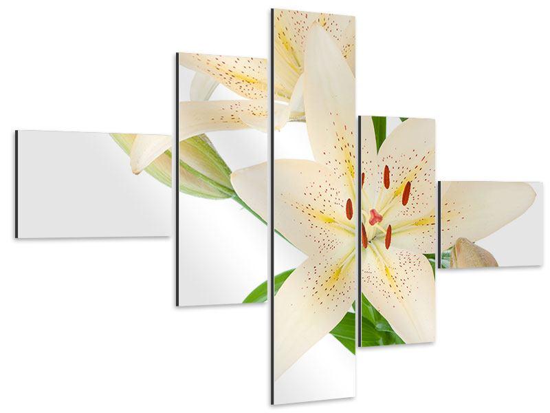 Aluminiumbild 5-teilig modern Weisser Lilienstrauch