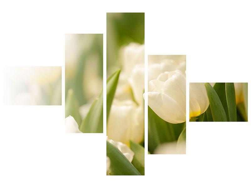 Aluminiumbild 5-teilig modern Tulpenperspektive