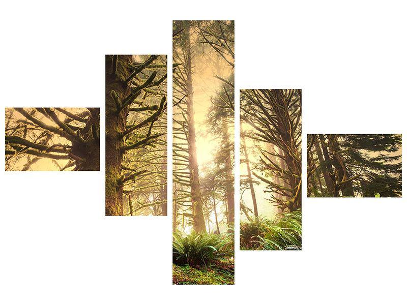 Aluminiumbild 5-teilig modern Sonnenuntergang im Dschungel