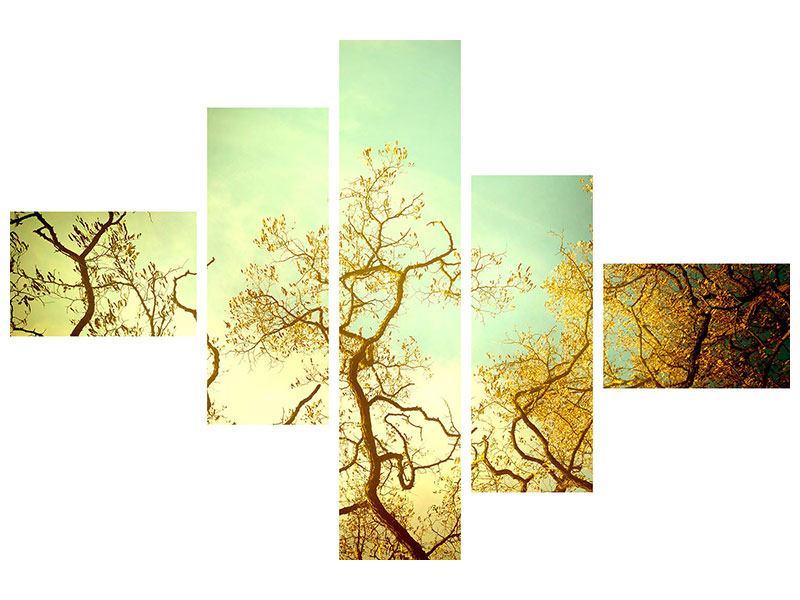 Aluminiumbild 5-teilig modern Bäume im Herbst