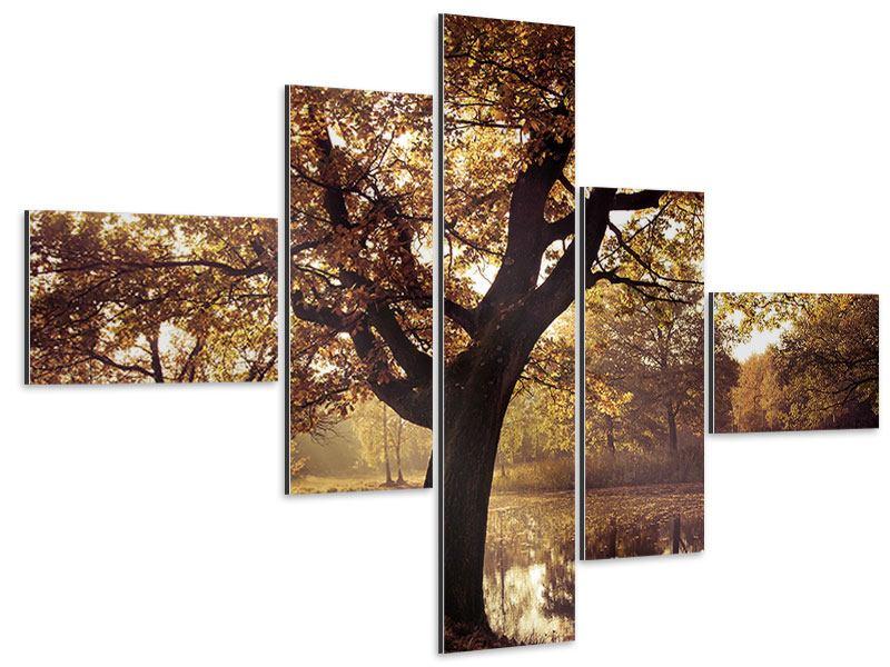 Aluminiumbild 5-teilig modern Landschaftspark