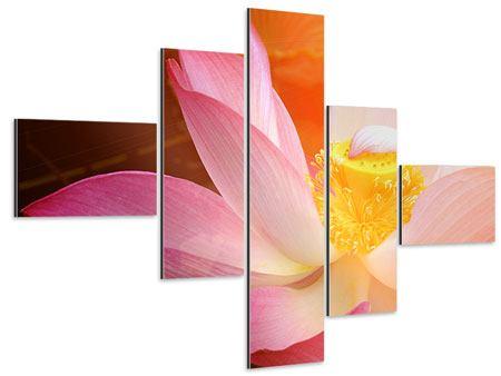 Aluminiumbild 5-teilig modern Close Up Lotus