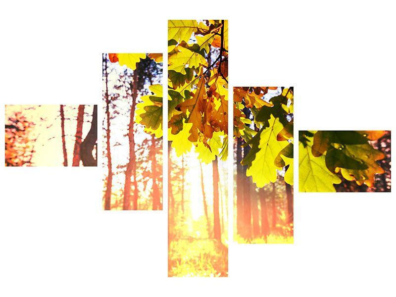 Aluminiumbild 5-teilig modern Herbst