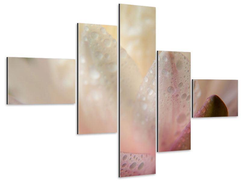 Aluminiumbild 5-teilig modern Close Up Seerose