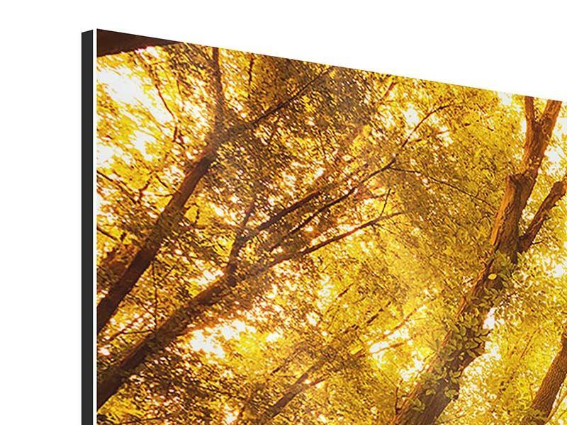 Aluminiumbild 5-teilig modern Herbstwald
