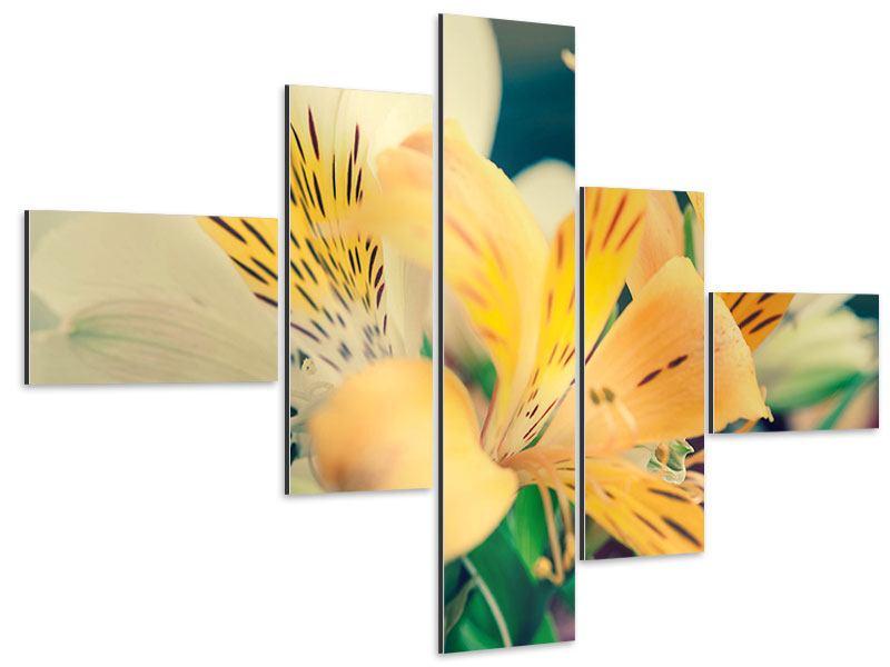 Aluminiumbild 5-teilig modern Tigerlilien