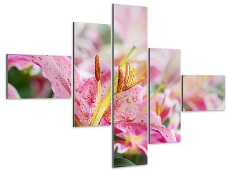 Aluminiumbild 5-teilig modern Lilien im Tau
