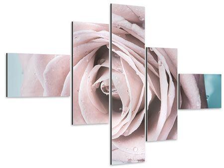 Aluminiumbild 5-teilig modern Pastellrose