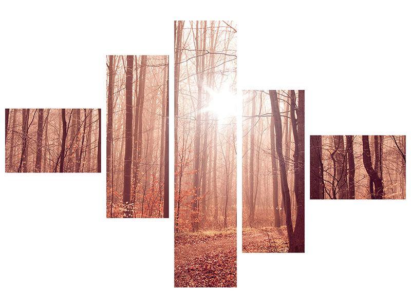 Aluminiumbild 5-teilig modern Sonnenuntergang im Herbstwald