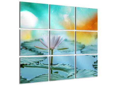 Aluminiumbild 9-teilig Verträumte Lotus