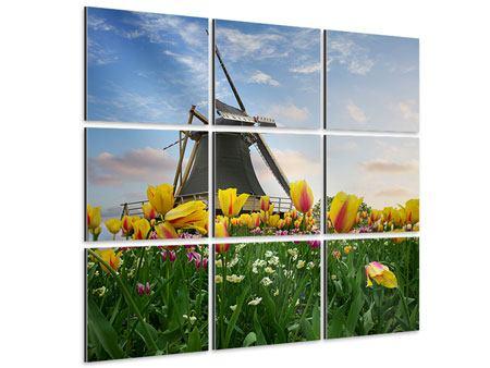 Aluminiumbild 9-teilig Die Windmühle mit den Tulpen