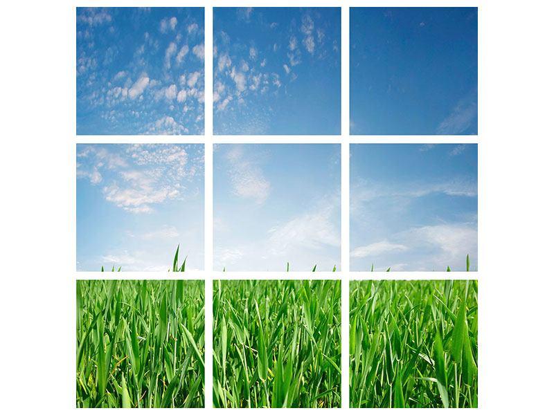 Aluminiumbild 9-teilig Das Gras