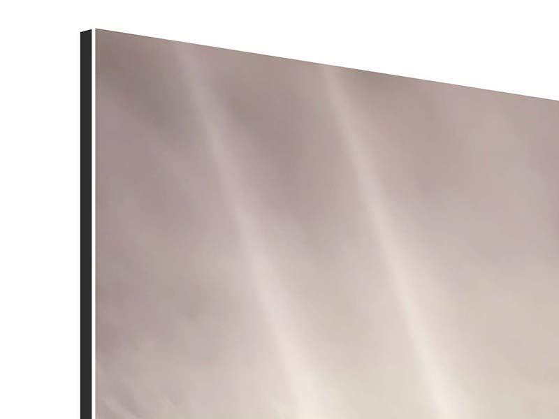 Aluminiumbild 9-teilig Gepard