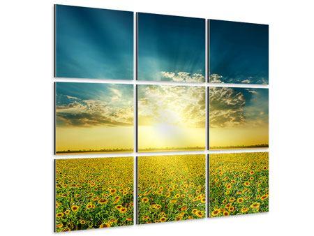 Aluminiumbild 9-teilig Sonnenblumen in der Abendsonne