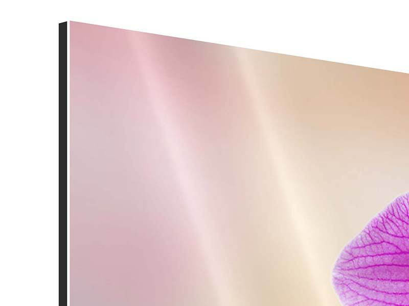 Aluminiumbild 9-teilig Romantische Orchideen
