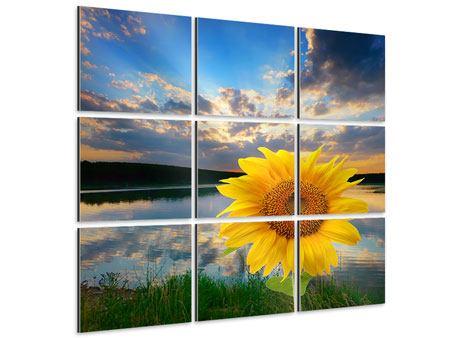 Aluminiumbild 9-teilig Sonnenblume am See