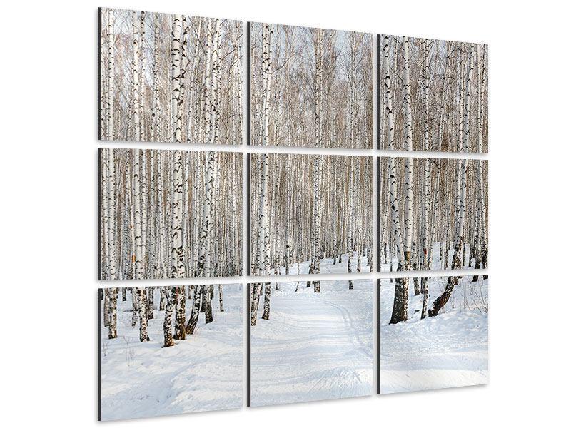 Aluminiumbild 9-teilig Birkenwald-Spuren im Schnee