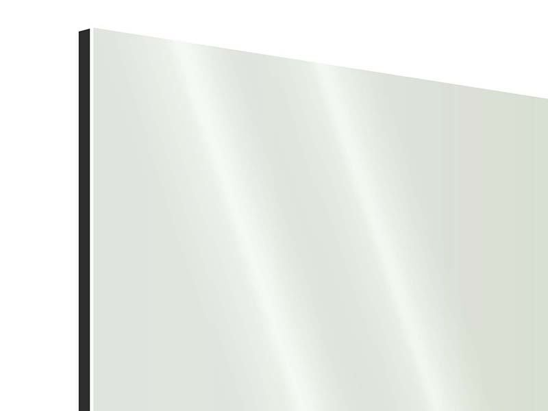 Aluminiumbild 9-teilig Bambuswall