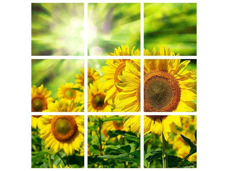 Aluminiumbild 9-teilig Die Sonne und die Blumen