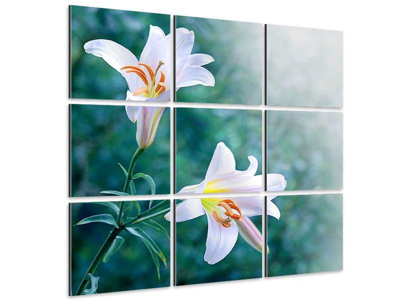 Aluminiumbild 9-teilig Weisses Lilienduo
