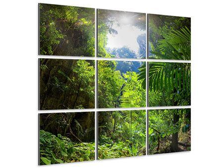 Aluminiumbild 9-teilig Lichtung im Dschungel
