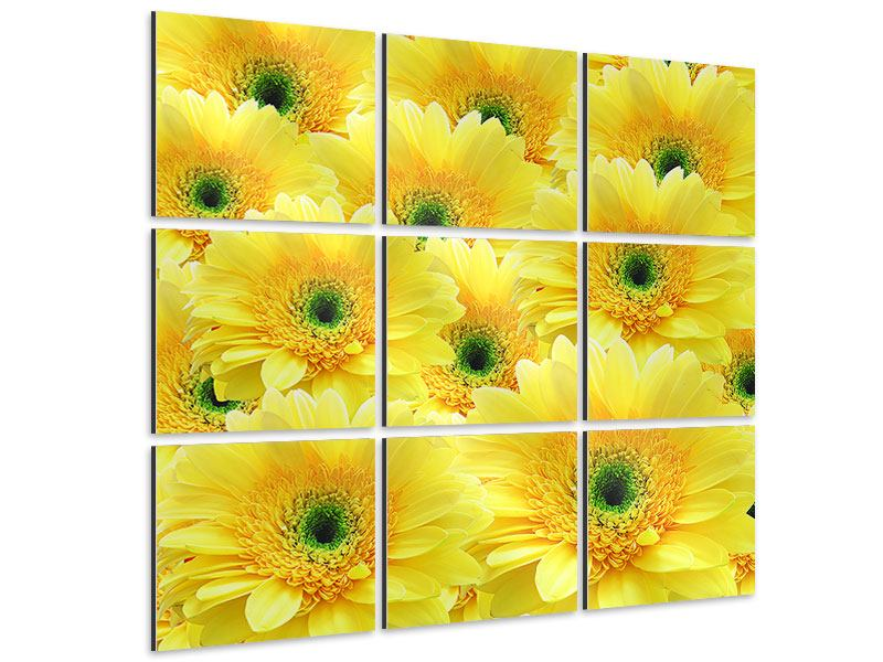 Aluminiumbild 9-teilig Flower Power Blumen