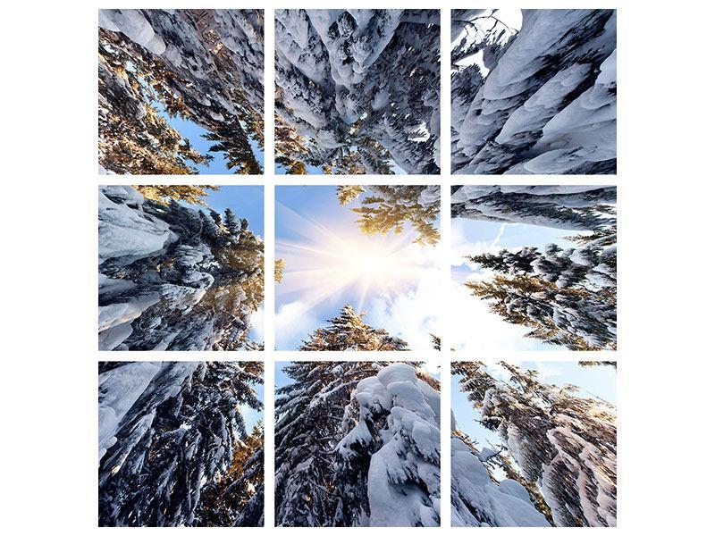 Aluminiumbild 9-teilig Verschneite Tannenspitzen in der Sonne