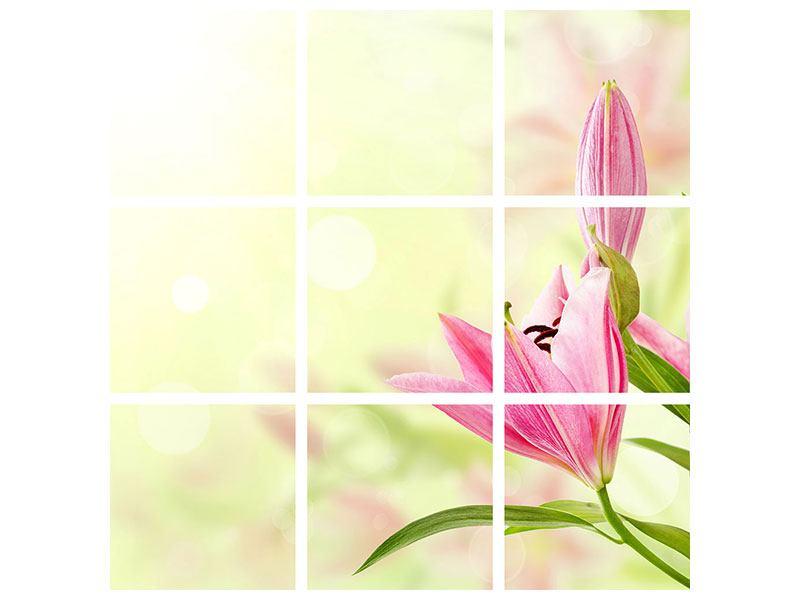 Aluminiumbild 9-teilig Lilien-Perspektive