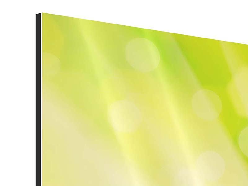 Aluminiumbild 9-teilig Lilienstrauss