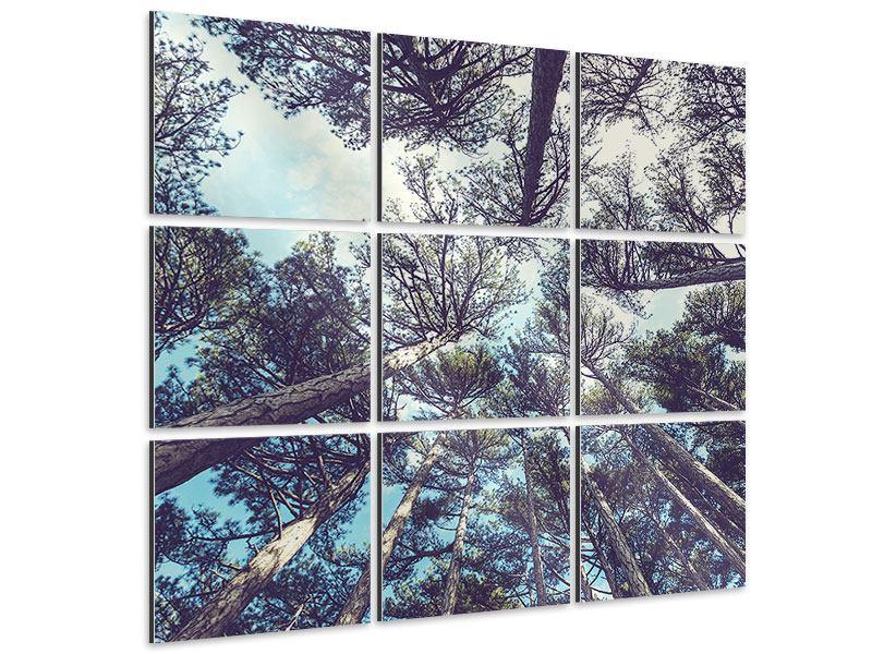 Aluminiumbild 9-teilig High in the Sky