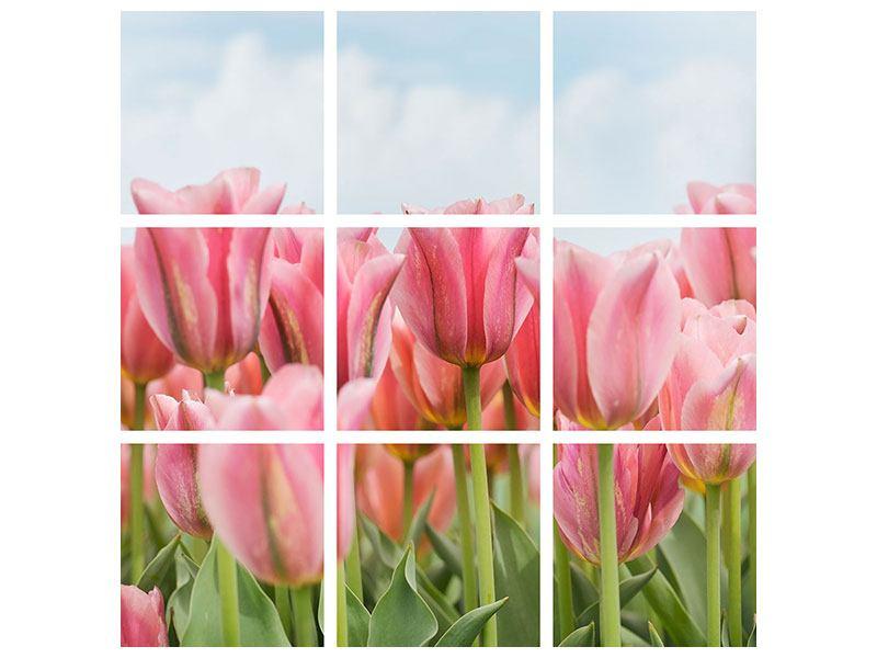 Aluminiumbild 9-teilig Zarte Tulpen