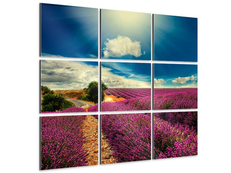 Aluminiumbild 9-teilig Das Lavendeltal