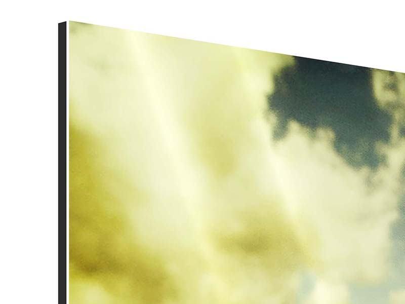 Aluminiumbild 9-teilig Ein Tulpenfeld
