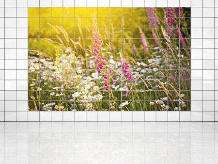 Immagine su piastrelle fioritura prato